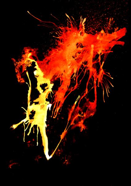 Shirt Feuerlauf